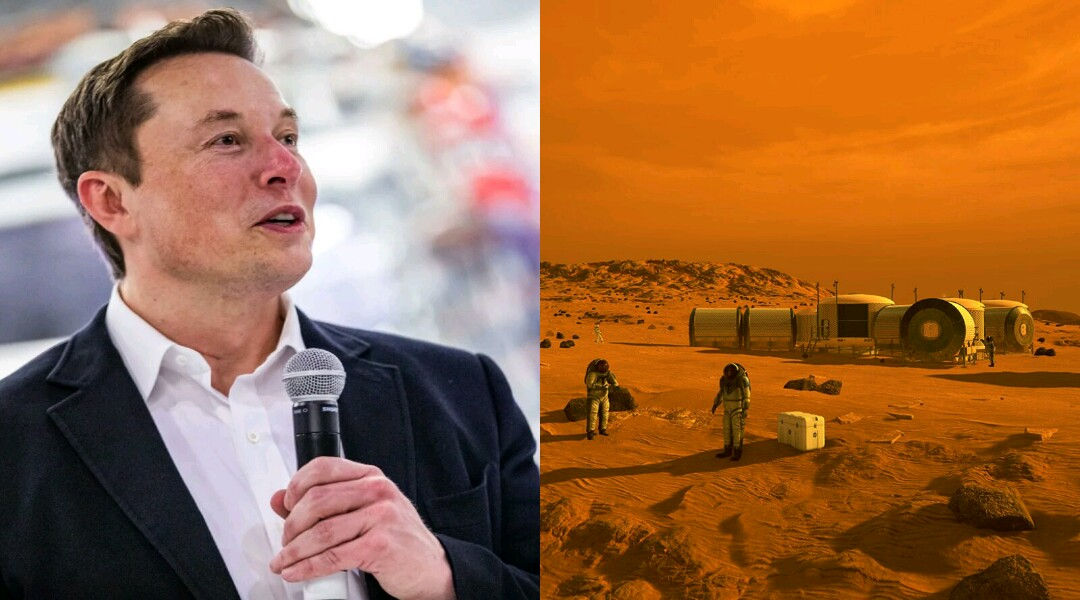 Elon Musk Plans to Build a Country on Mars in The Future — Governed By Democracy Constitution